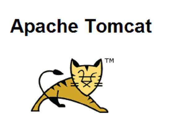 Tomcat.jpg